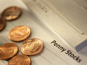 How beginner friendly is Penny Stock Investment