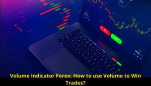 Volume Indicator Forex